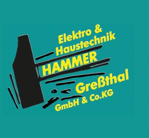 Hammer Elektro & Haustechnik GmbH & Co. KG