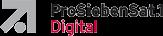 ProSiebenSat.1 Digital Data GmbH