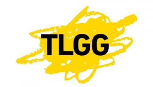 Torben, Lucie und die gelbe Gefahr (TLGG) GmbH