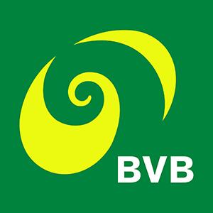 BVB Baseler Verkehrsbetriebe
