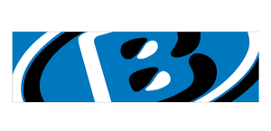 Bachmann Forming AG